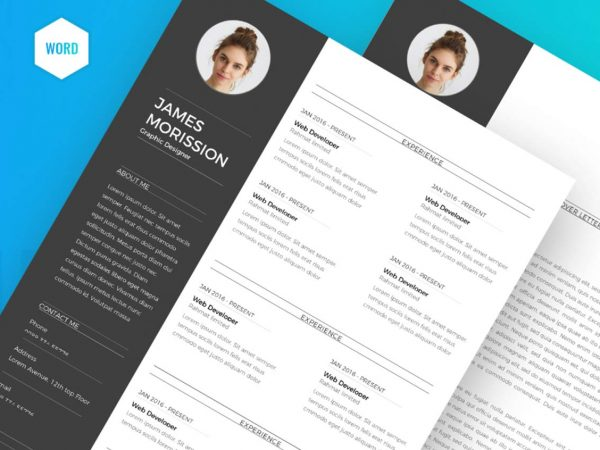 Professional Resume Format in MS Word