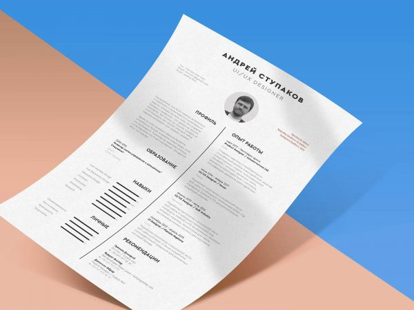 Indesign Resume CV Template Free Download 2019