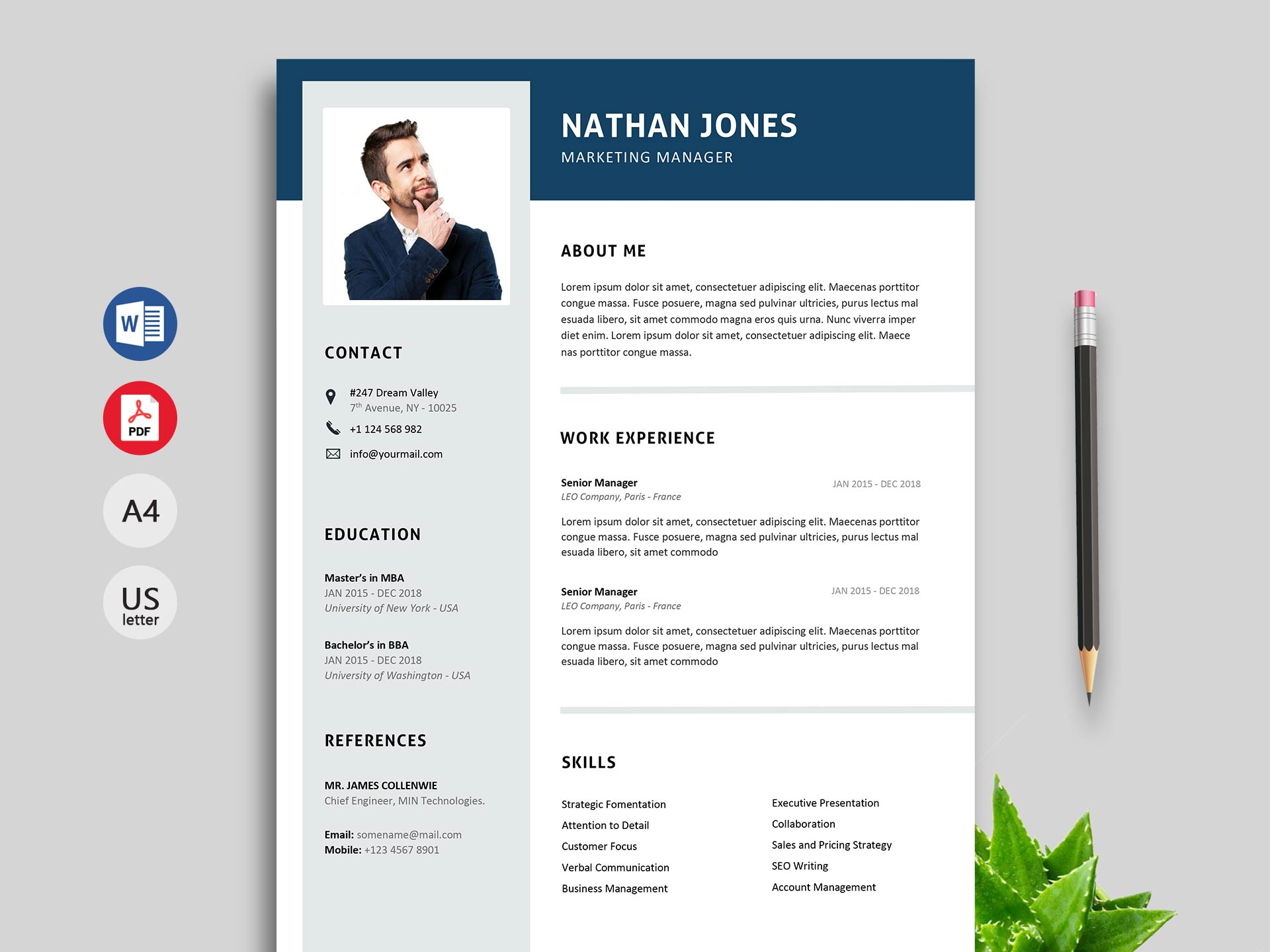 Best Professional Resume Cv Templates Free Download